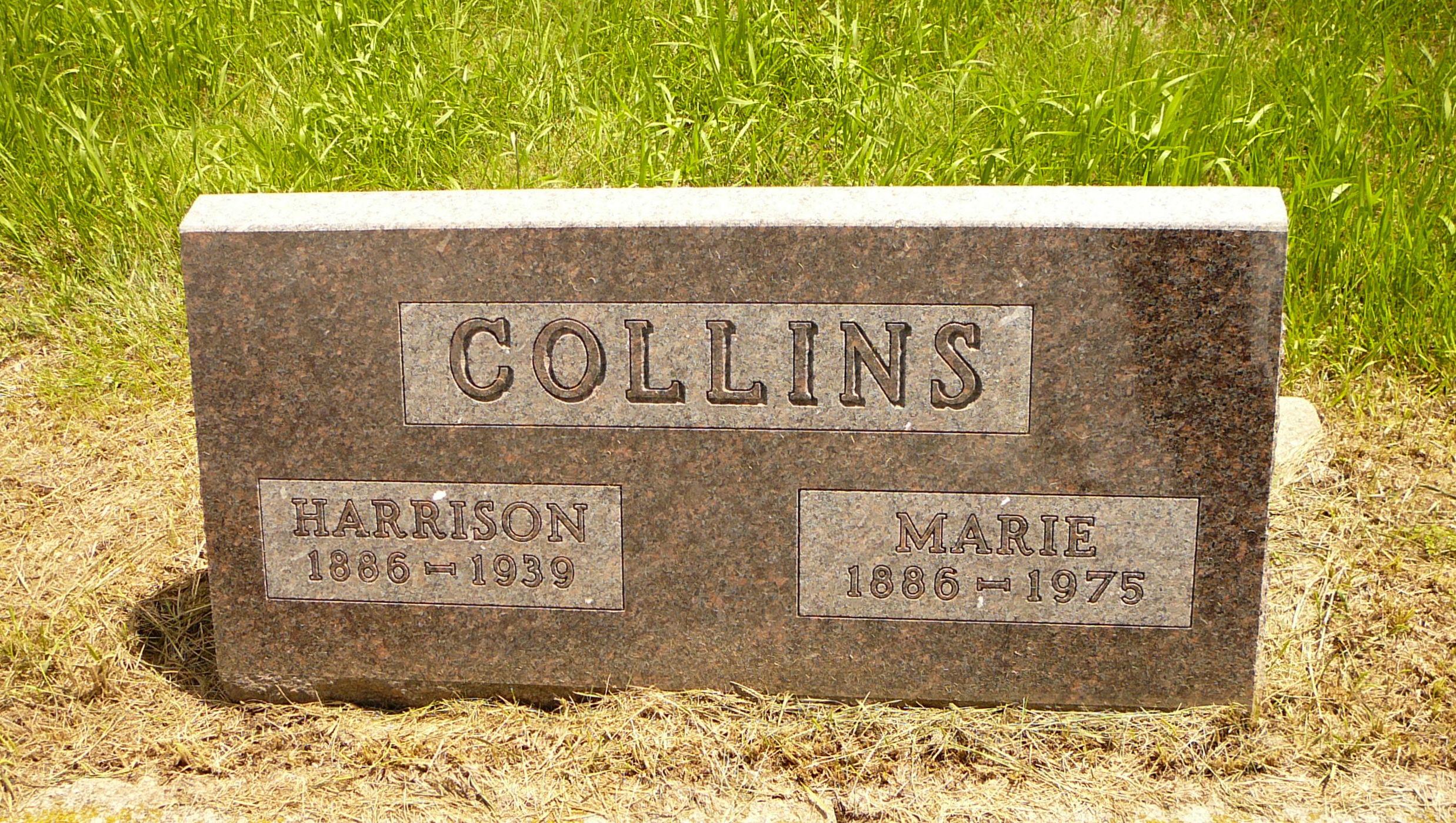 Verne Collins
