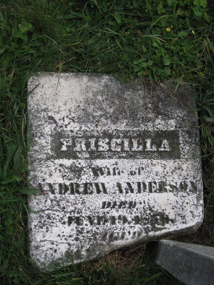 Priscilla Bryson