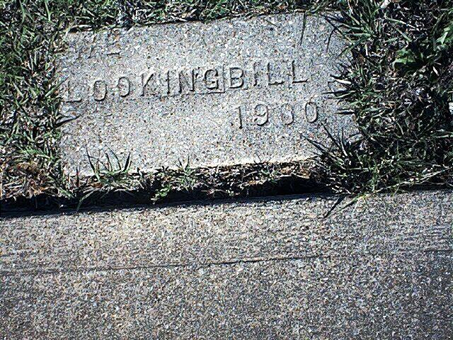 Lester W Lookingbill