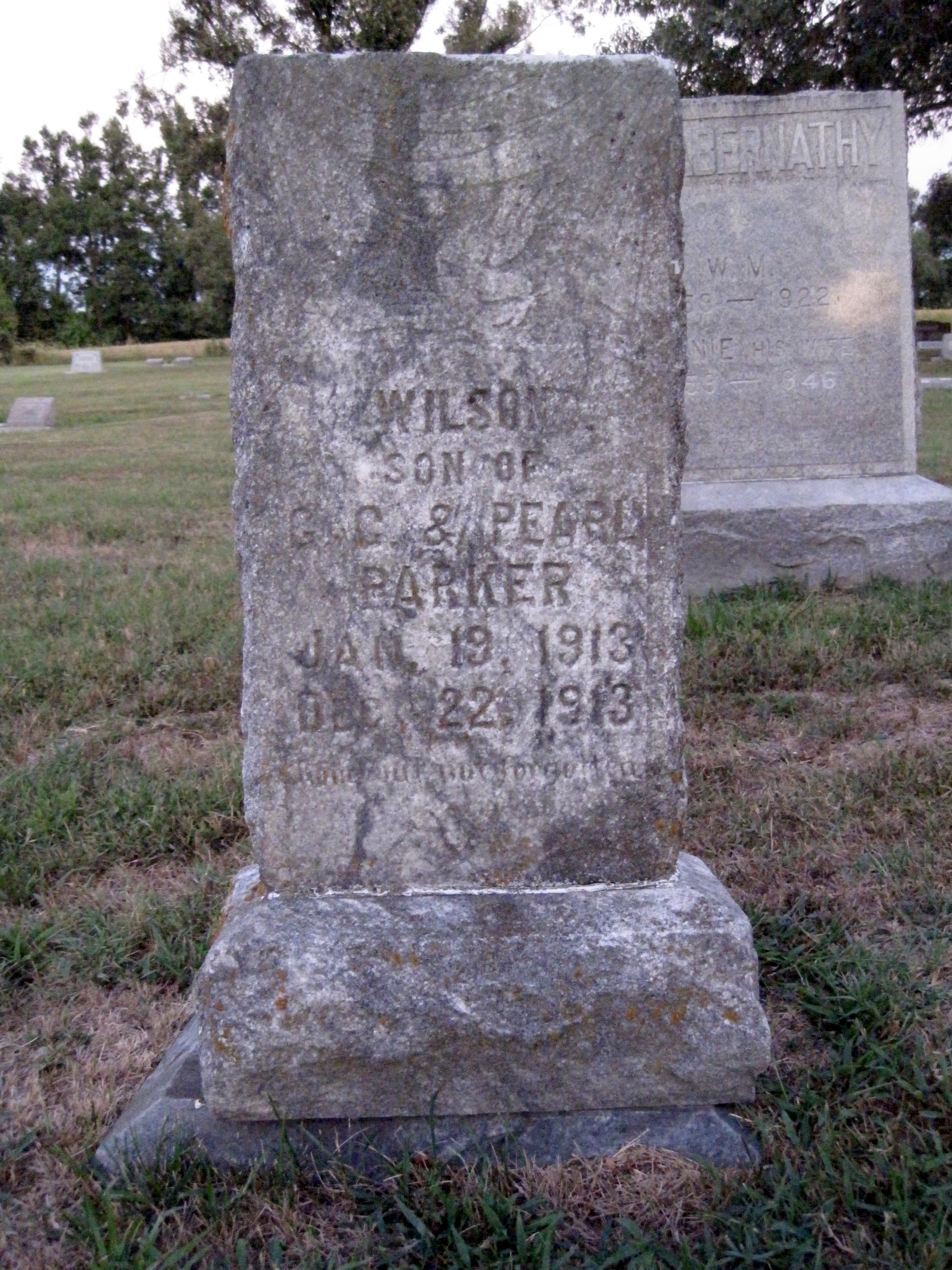 Mary Wilson Parker