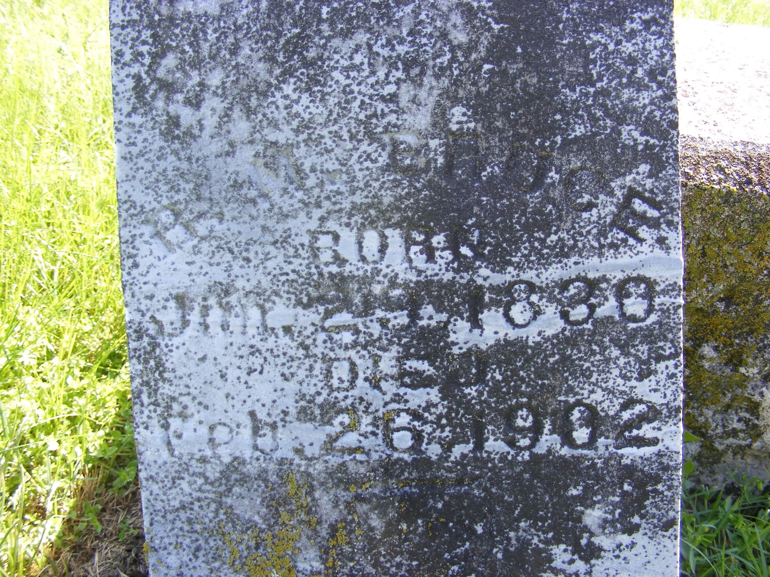 Robert M Bruce