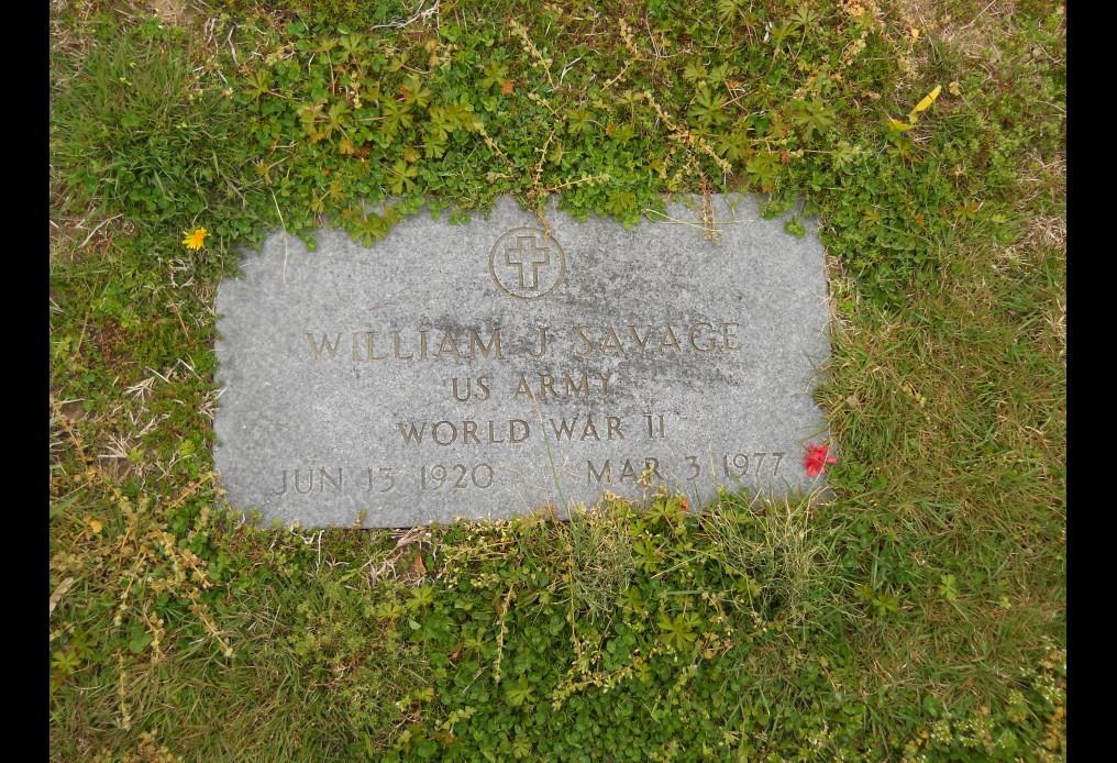 James William Savage