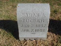 Sarah A Tucker