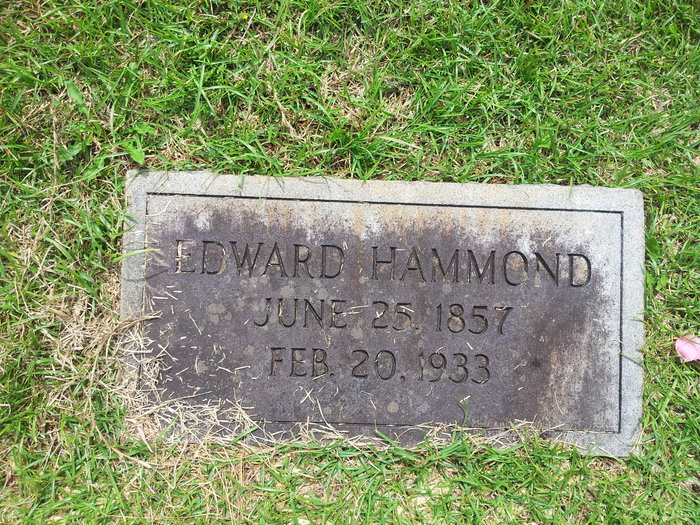 Edward D Hammond