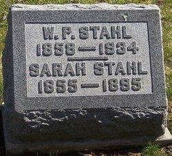 Sarah Ann Swank