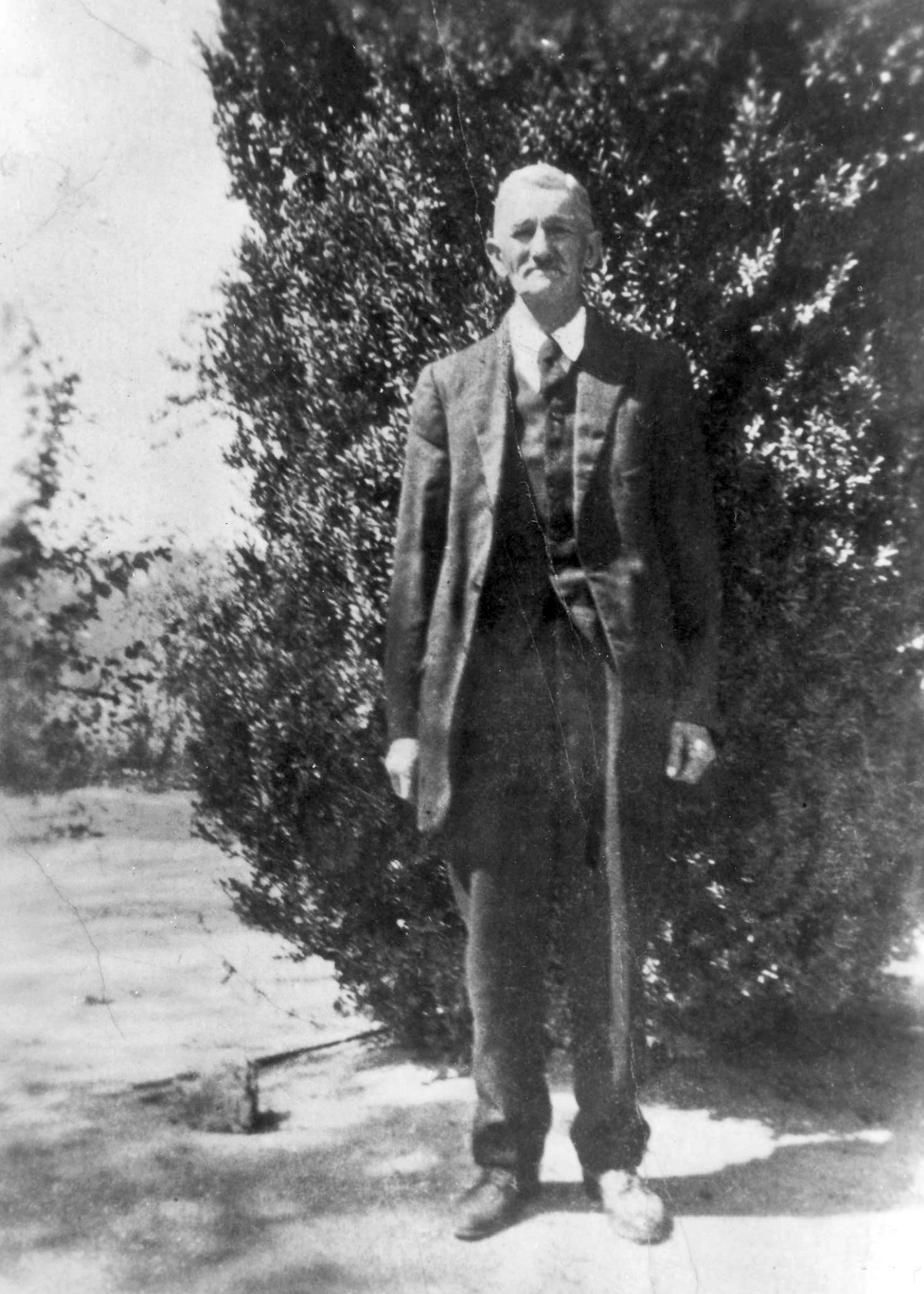 William Henry Rains