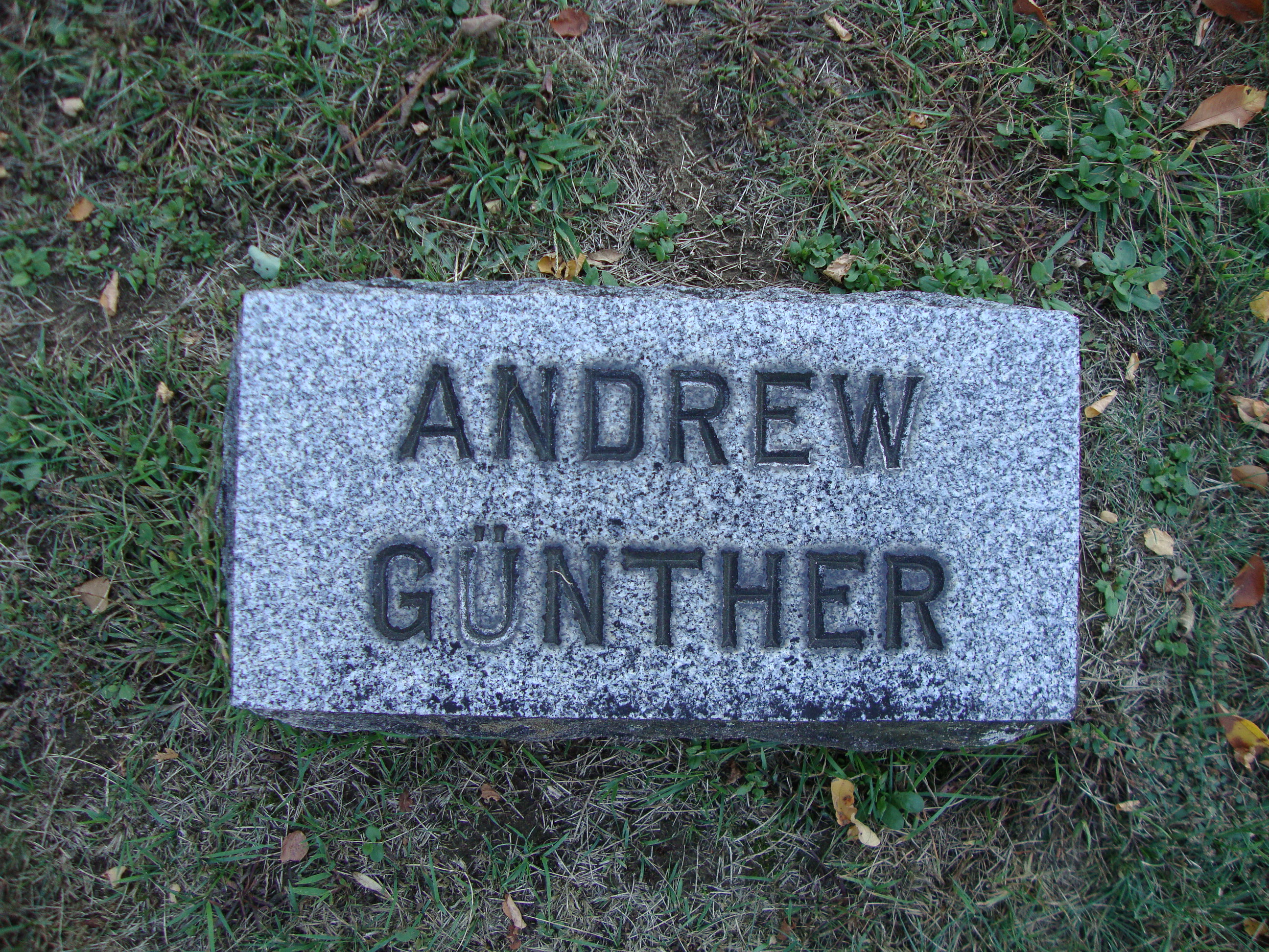 Andrew Guenther