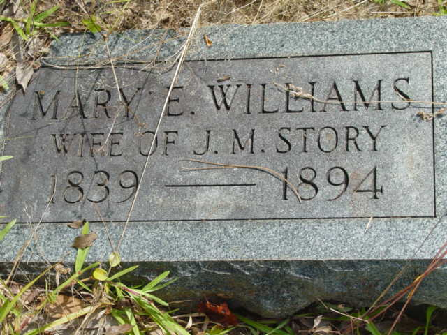 Mary Elizabeth Williams