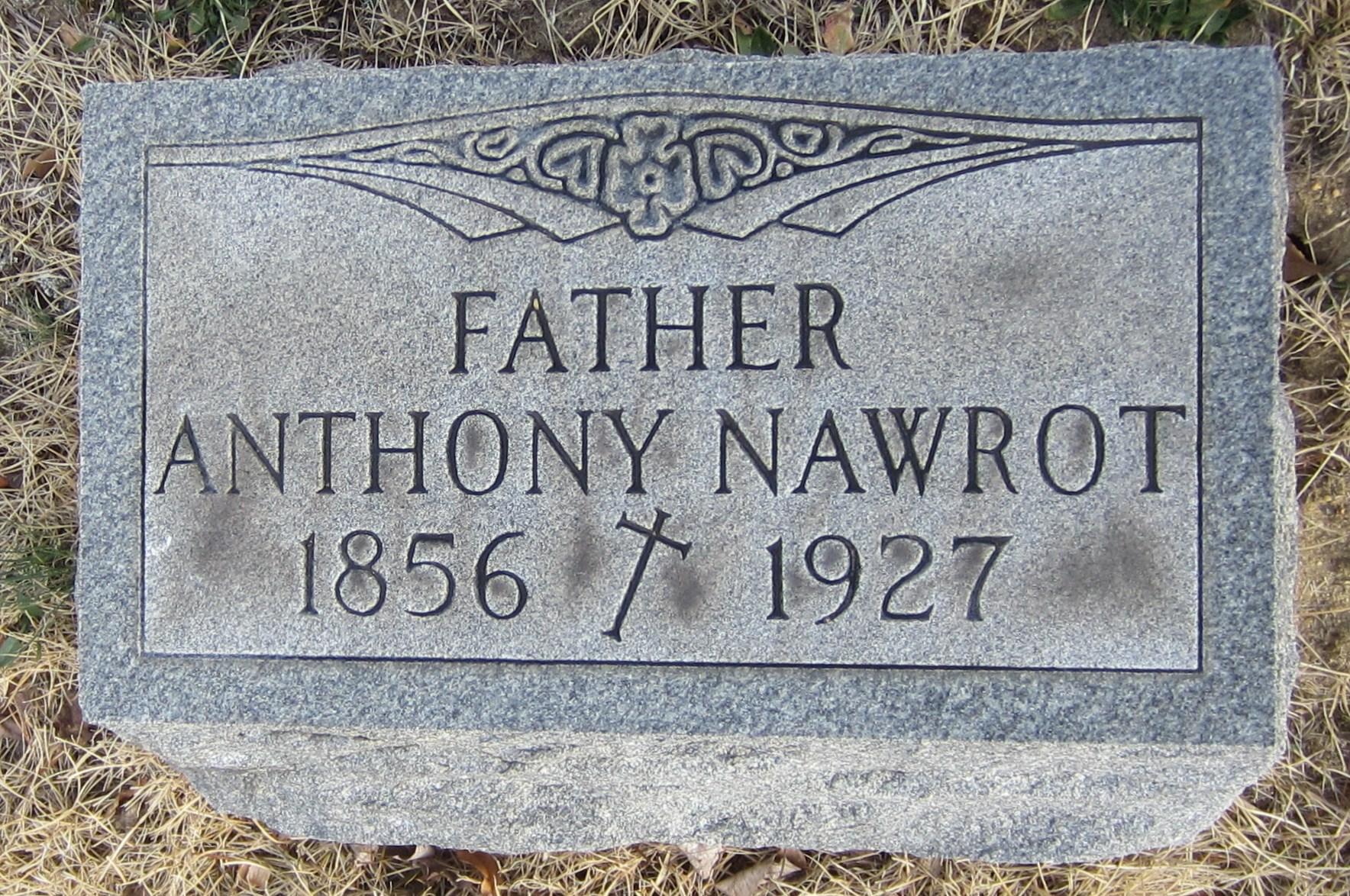 Peter Nawrot