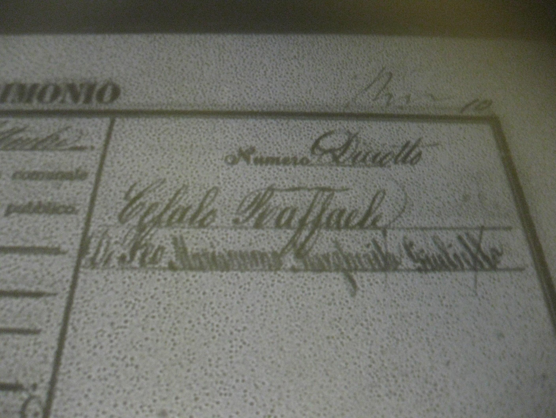 Margherita Di Francesco