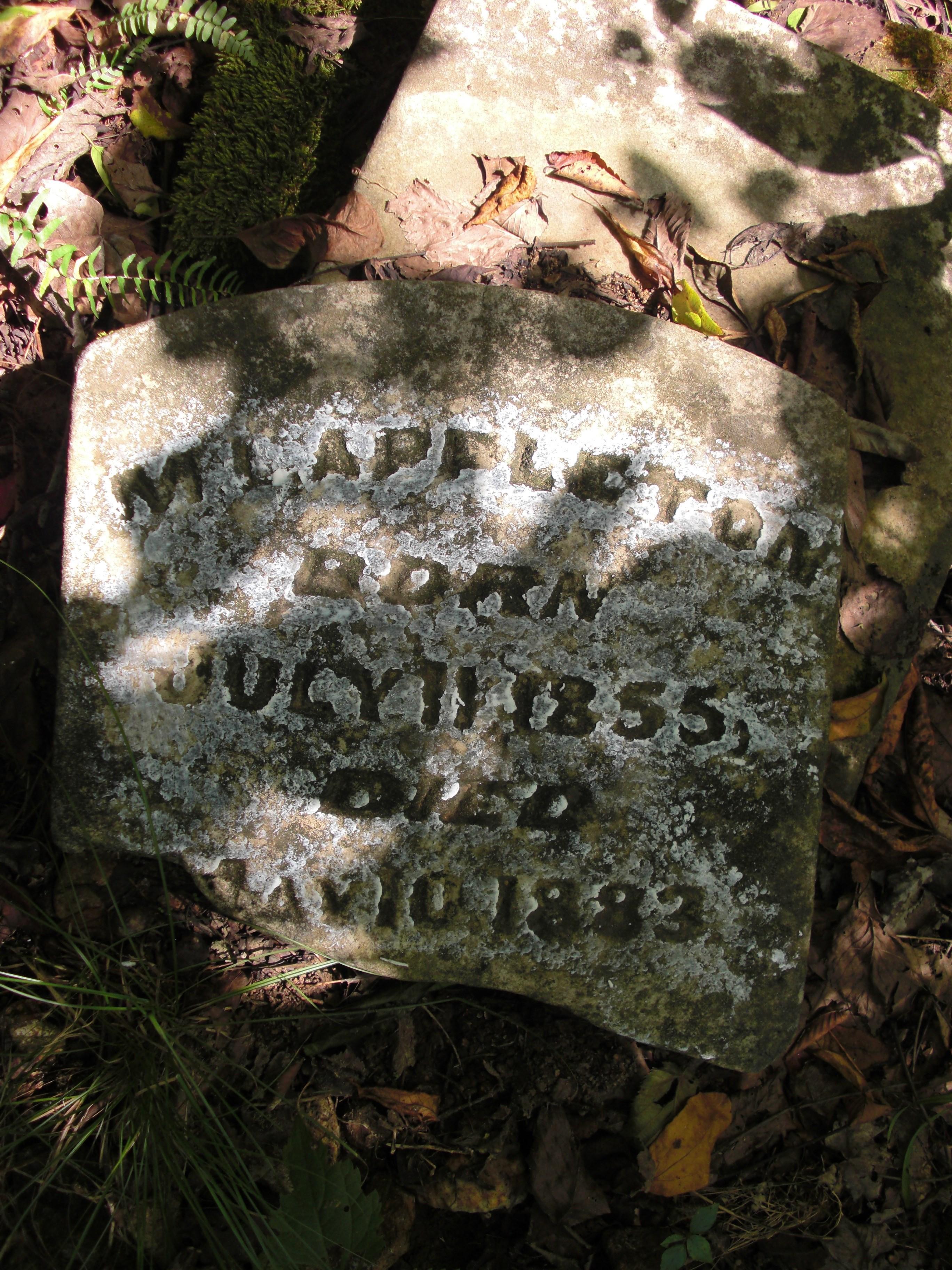 Martha Appleton