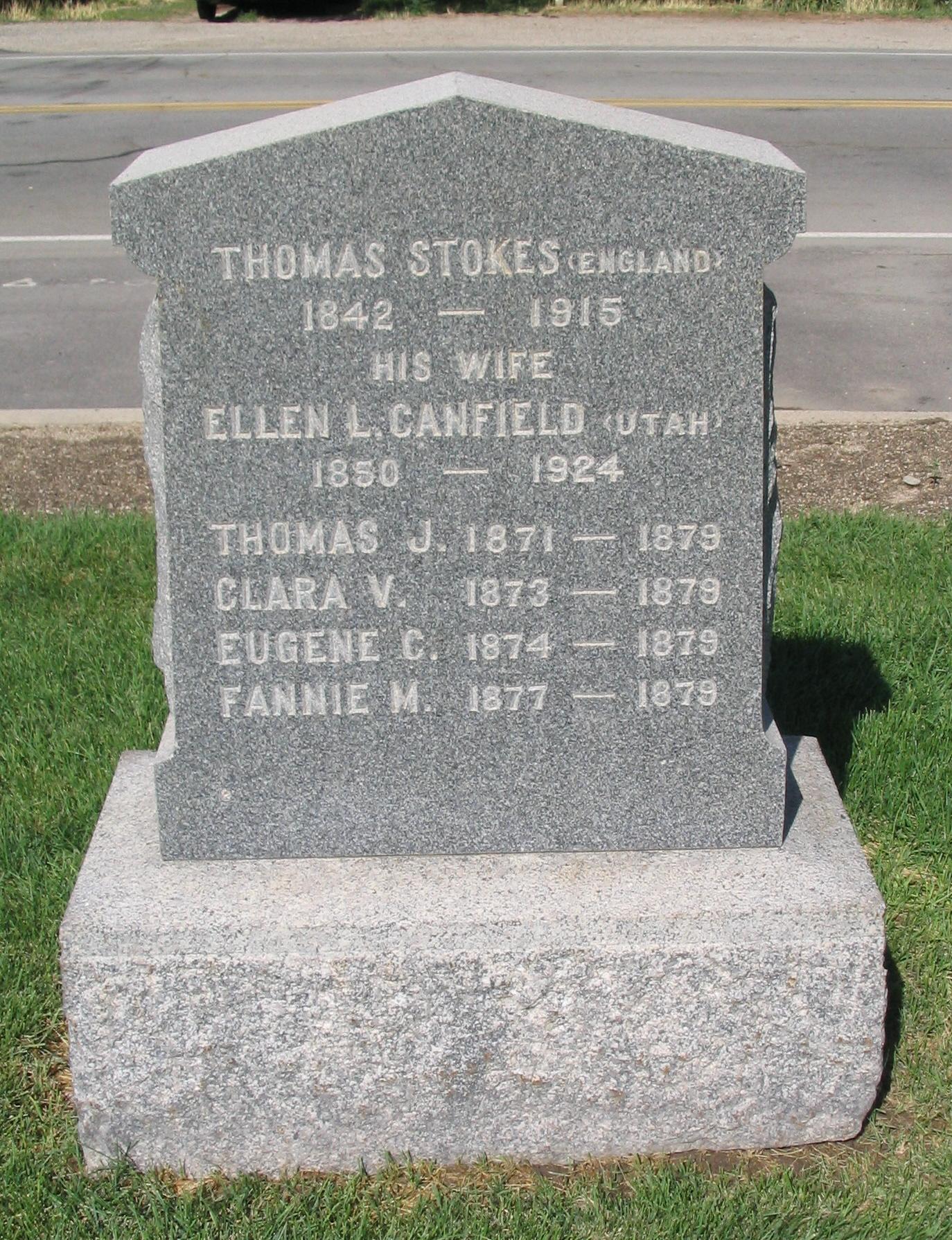 Thomas Norman Stokes
