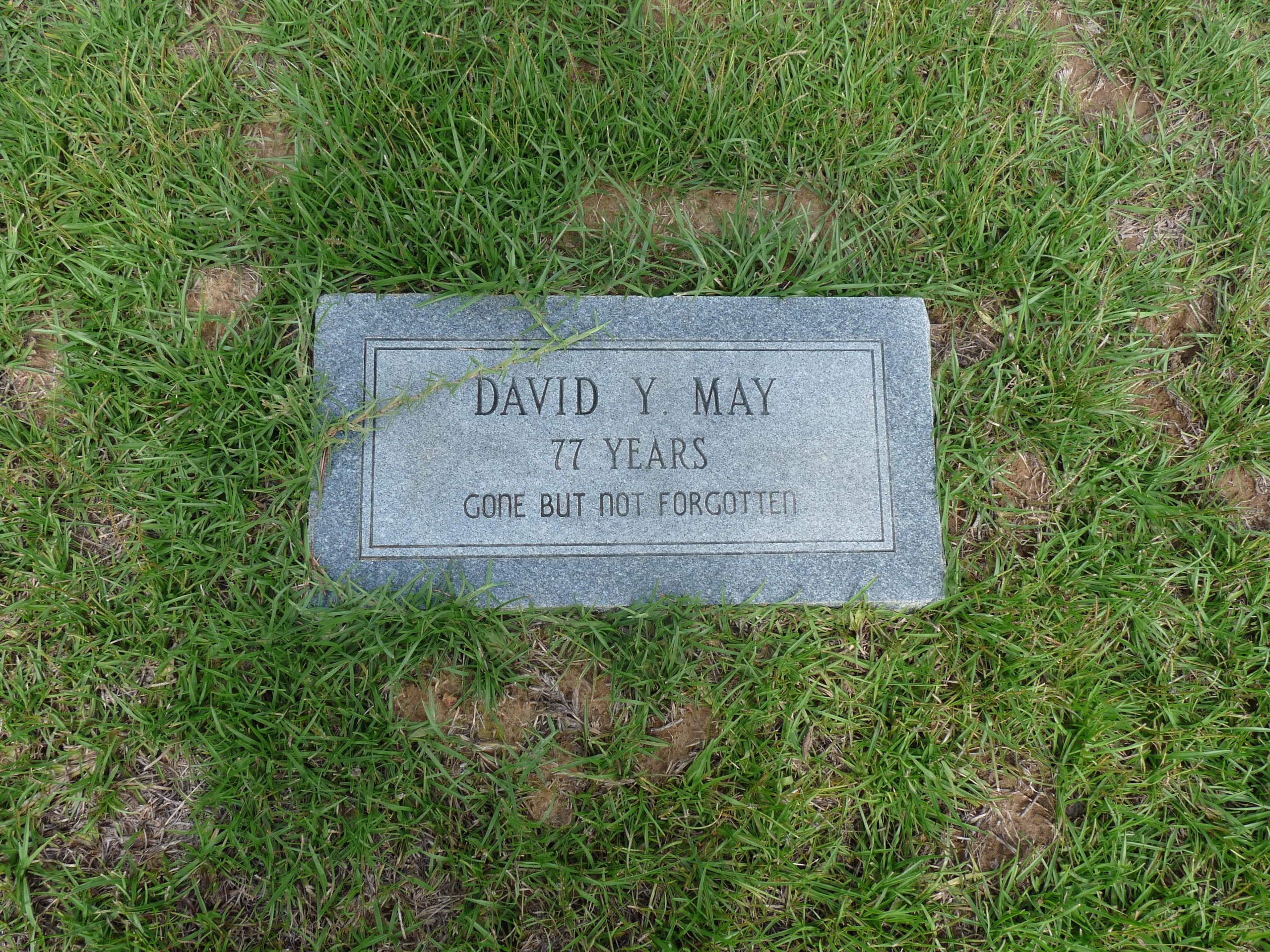 David Young May