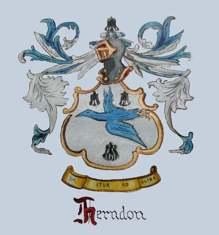 Love Herndon
