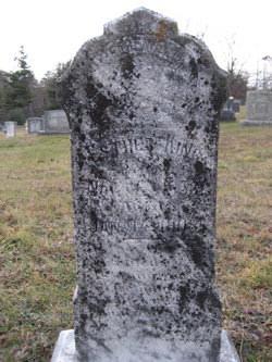 Mary J Stepp