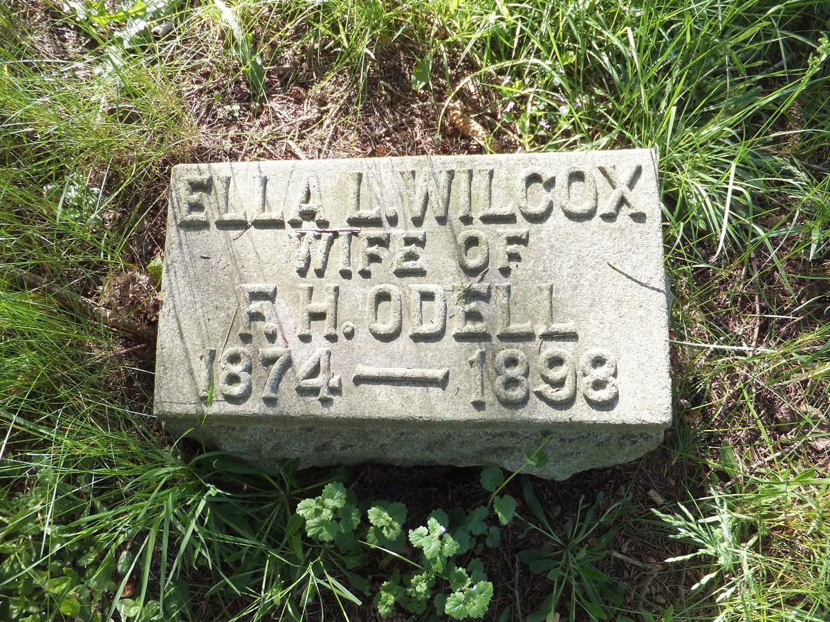 Ella Mae Wilcox