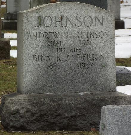 Bina Johnson