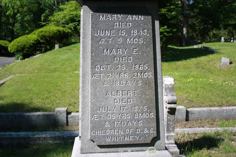 Mary Elizabeth Whitney