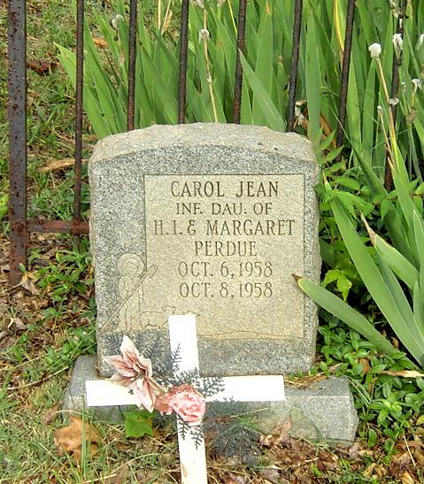 Carol Perdue