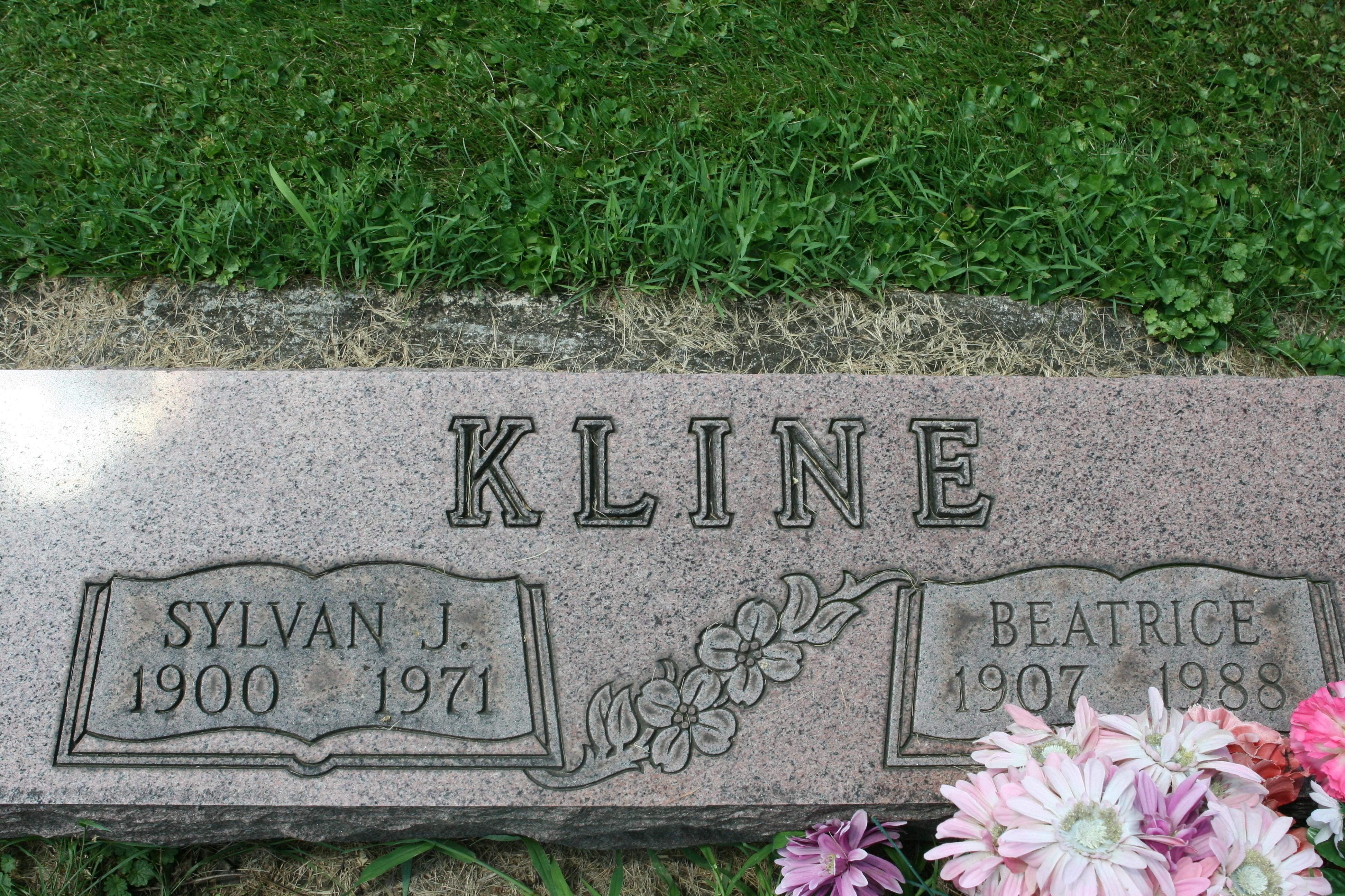 Lesley Joseph Kline