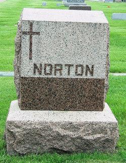 Harley Norton