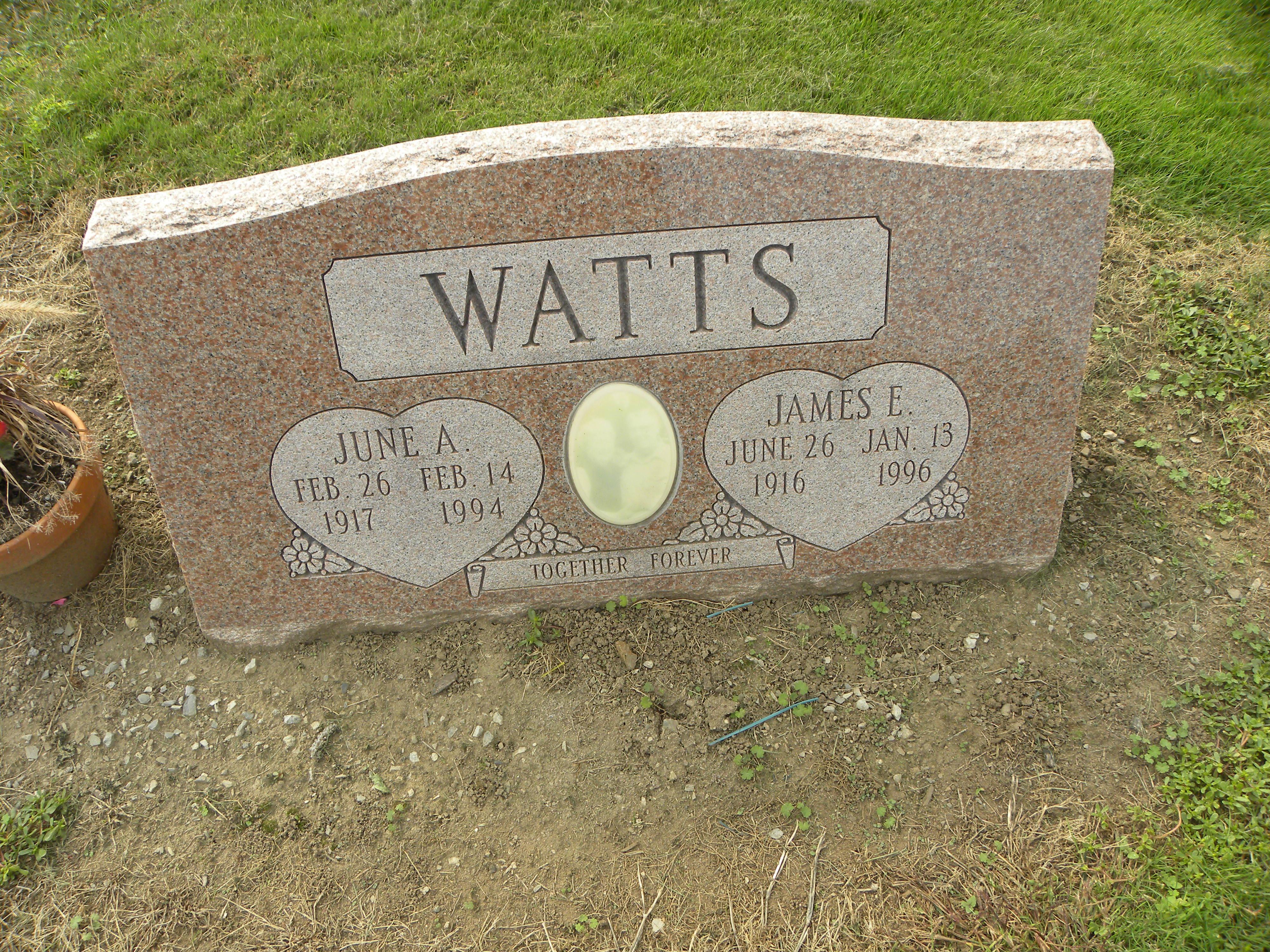 James E Watts