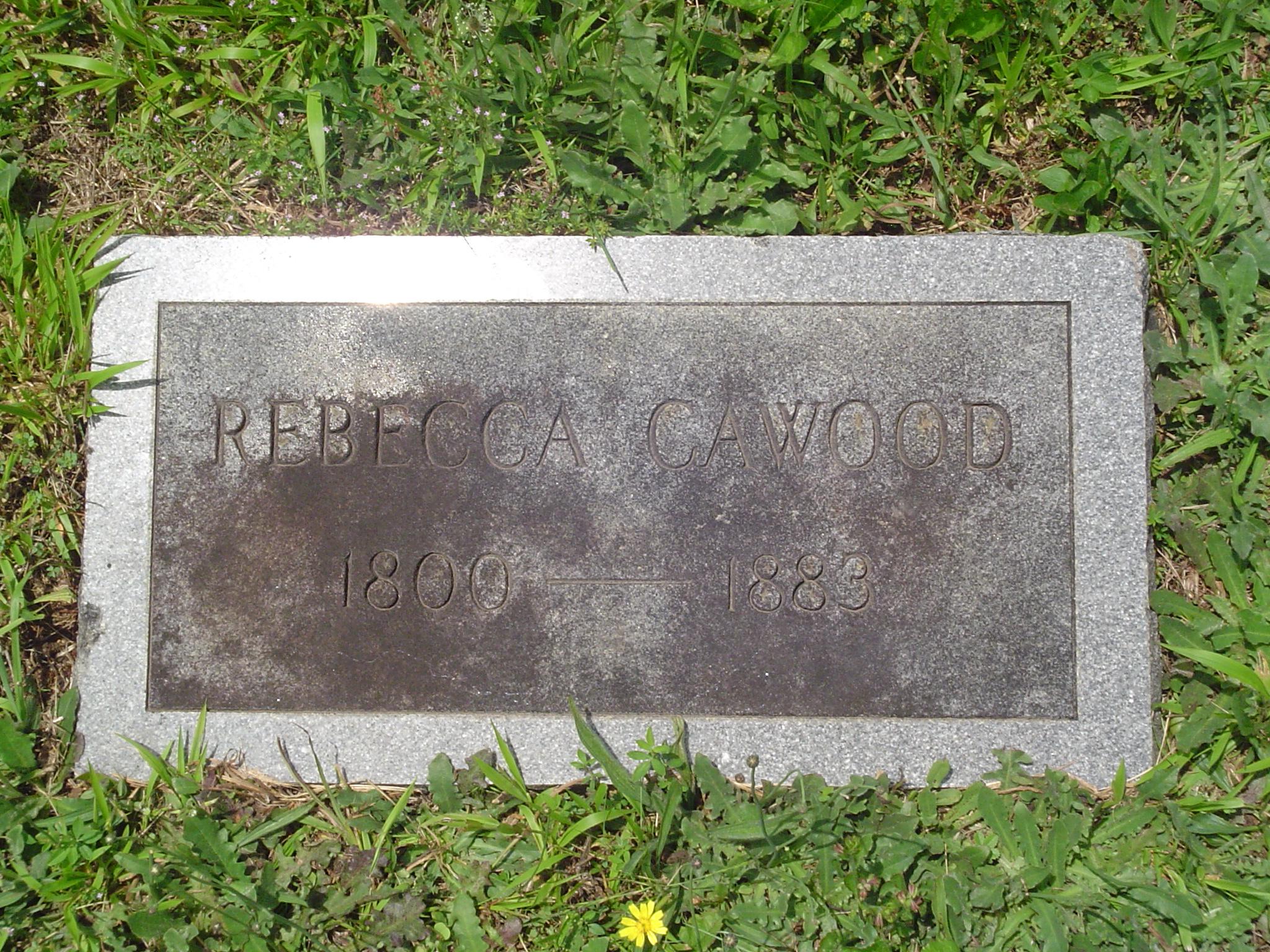 Rebecca Cawood
