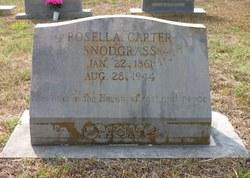 Amanda Bell Carter