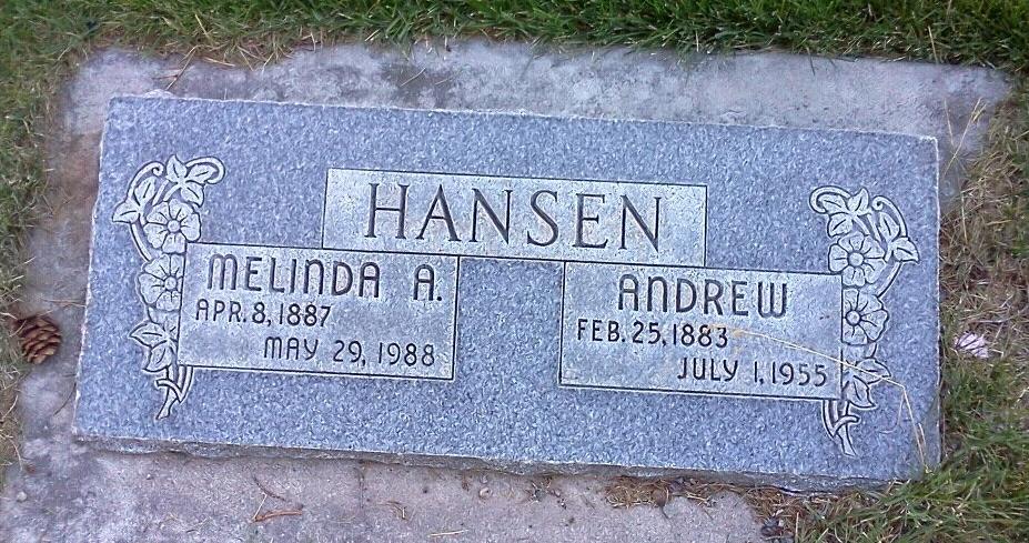 Andrew Hansen
