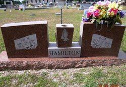 Wiley Winton Hamilton