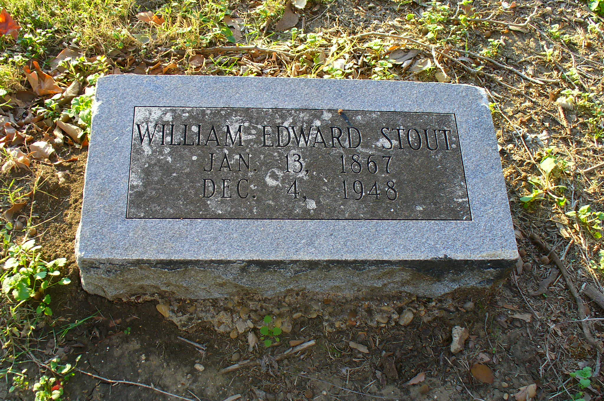 William Edward Stout