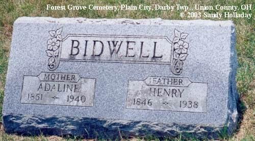 Henry Bidwell