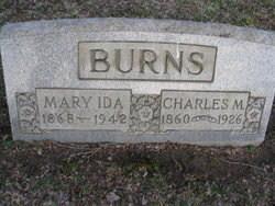 Minnesota Burns