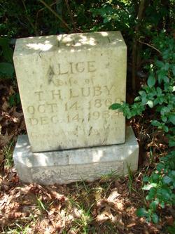 Alice A Anderson
