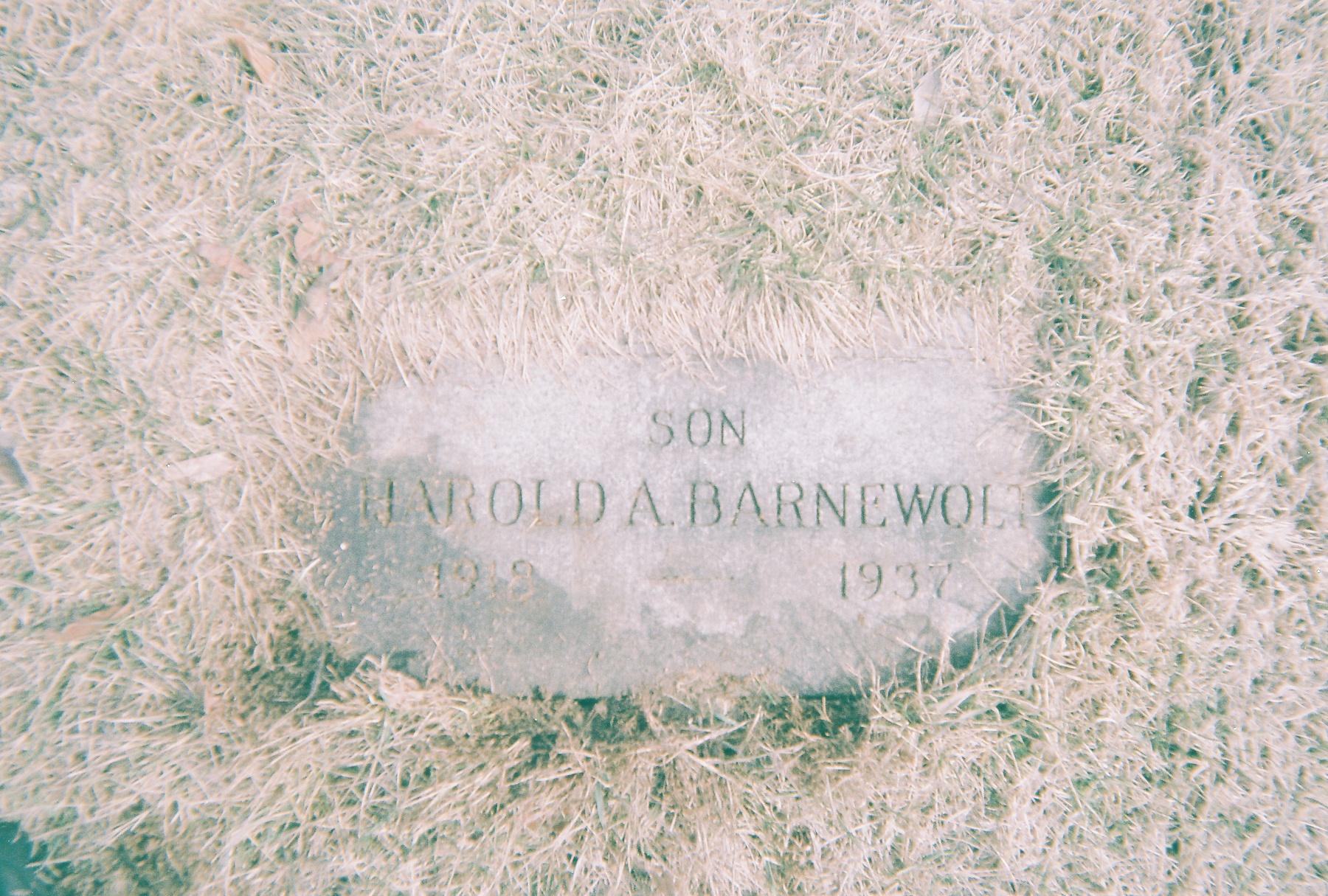 Harold Adolph Barnewolt