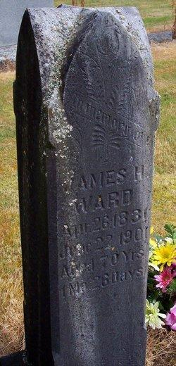 Amos Ward