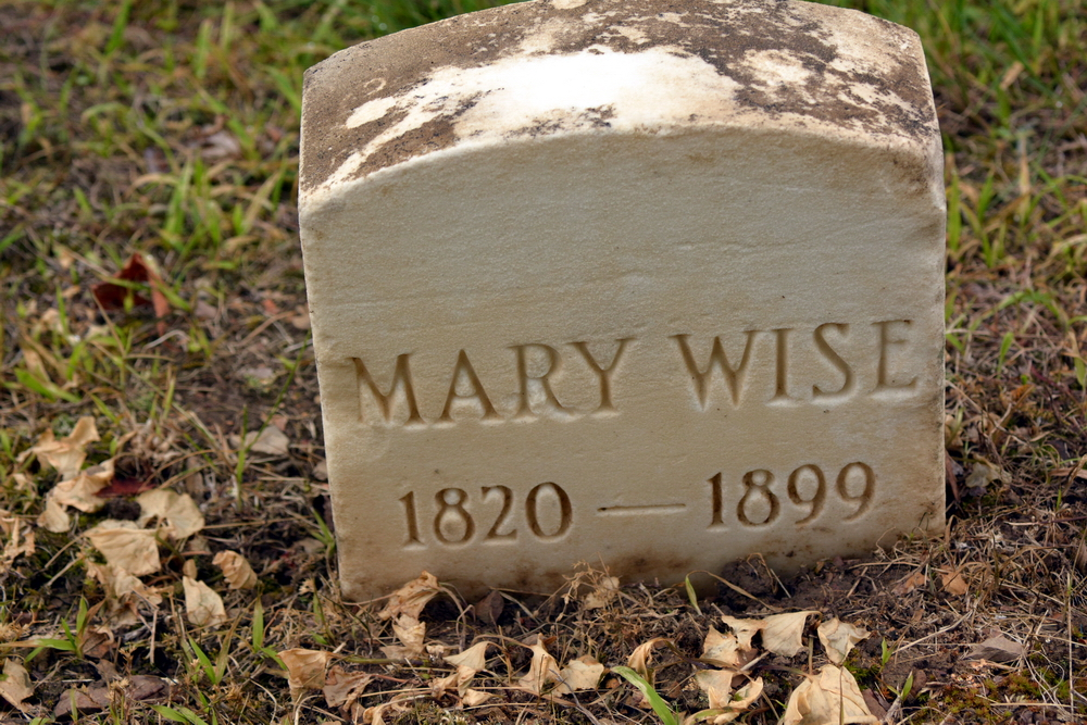 Mary Ann Shade
