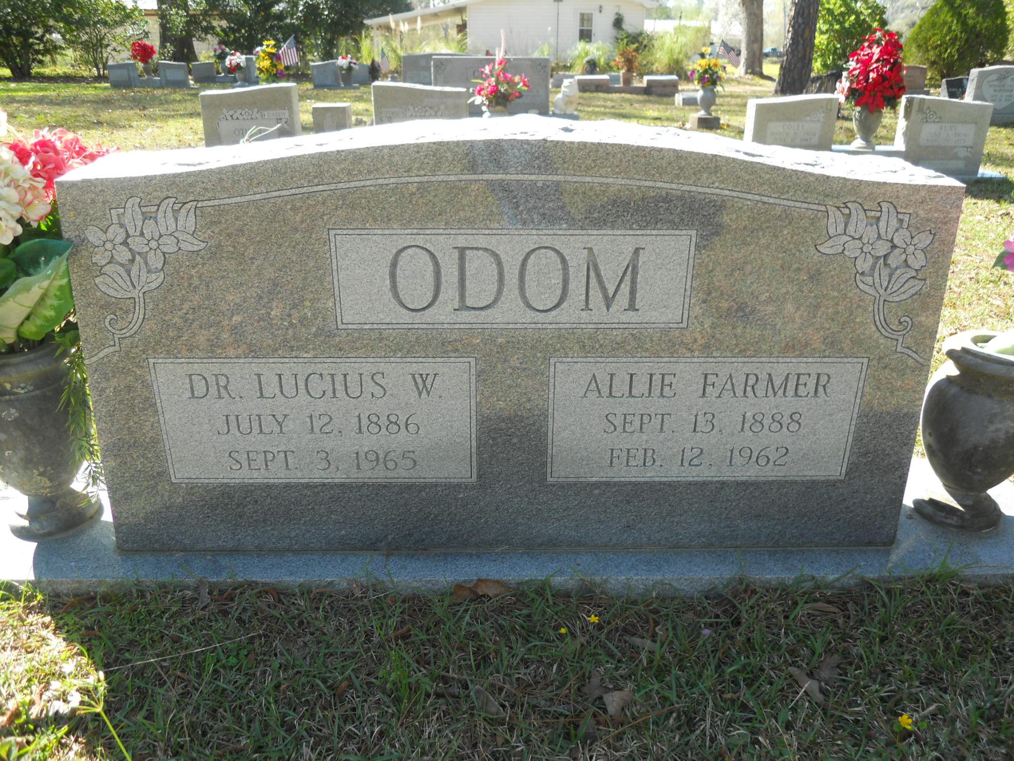 Allie Odom
