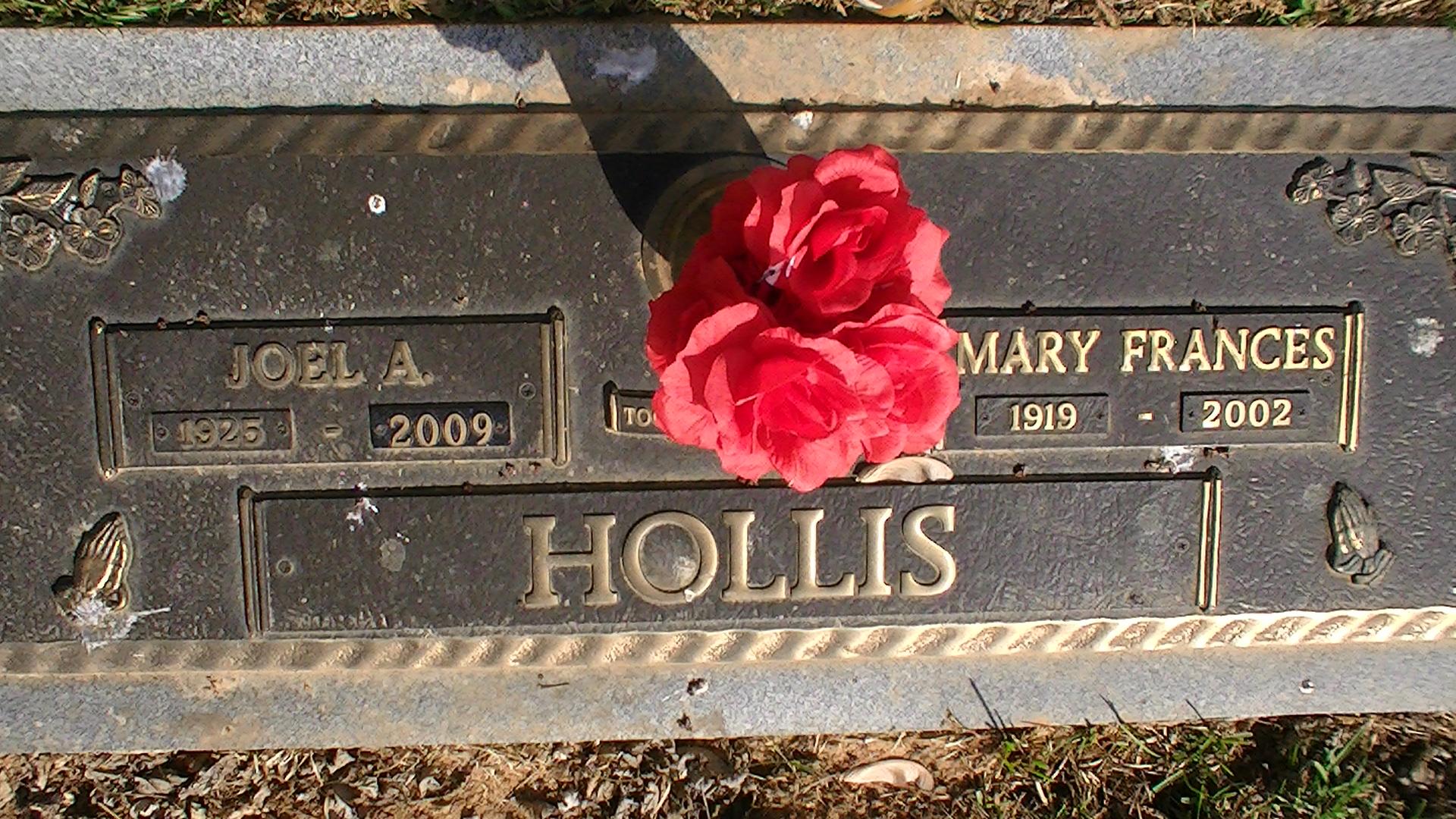 Joel Hollis