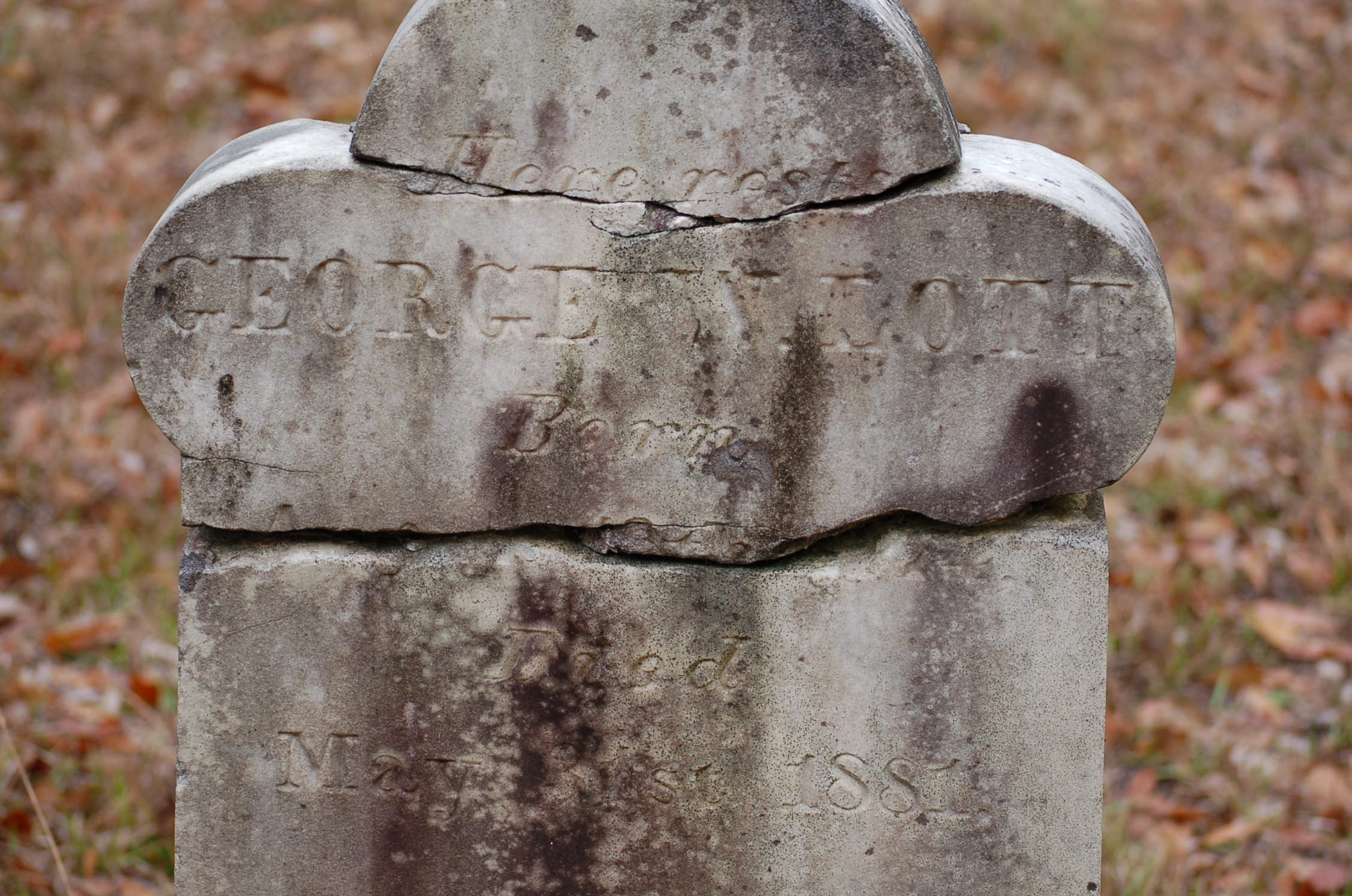 George Washington Lott