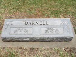 Isaac Newton Darnell