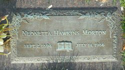 Susan E Hawkins