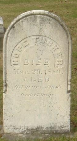 Peter Tucker