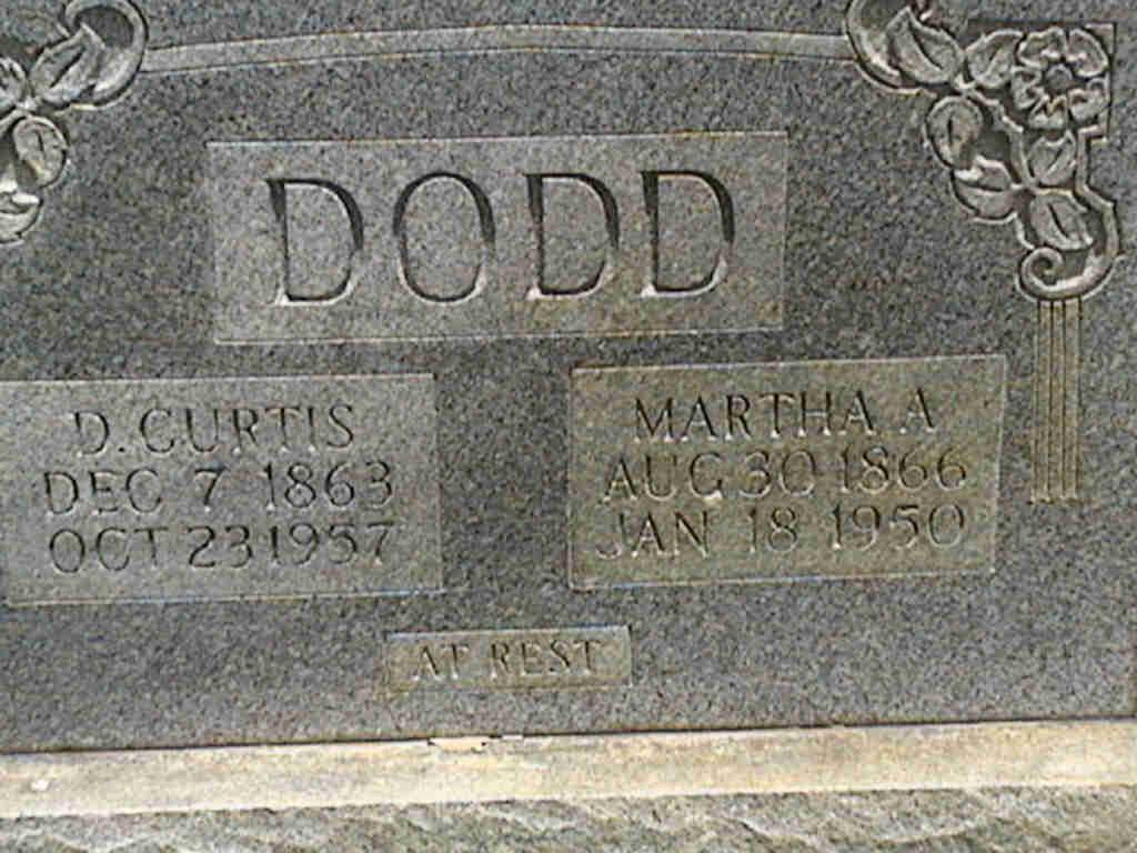 Curtis Dodd
