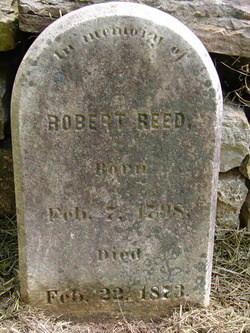 Robert R Reed