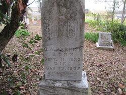 George Washington Parrish