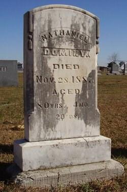 Nathaniel Dominy