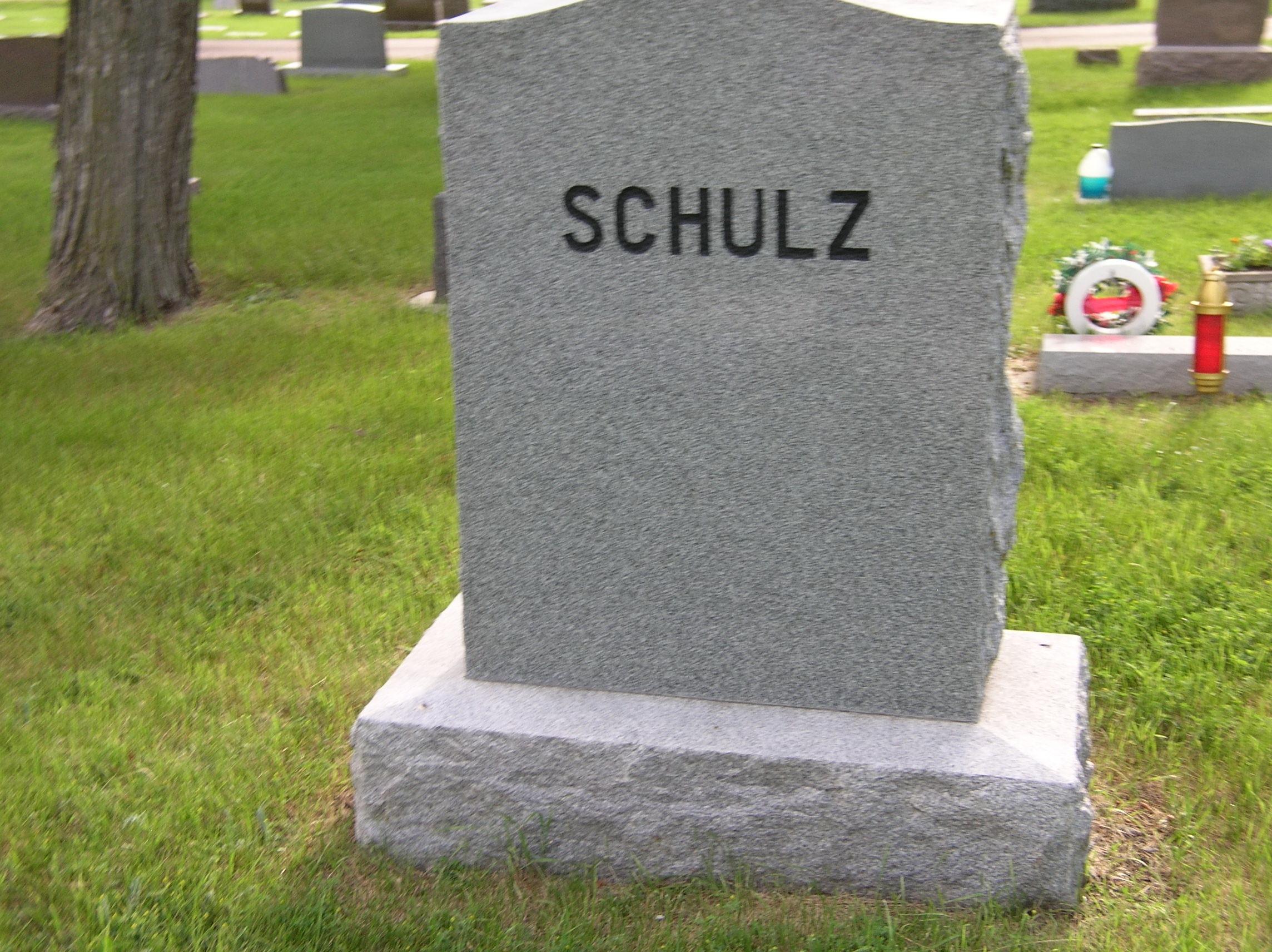 Henry C Schultz