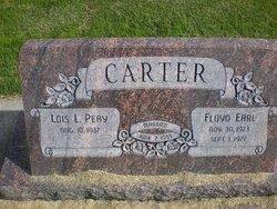 Floyd E Carter