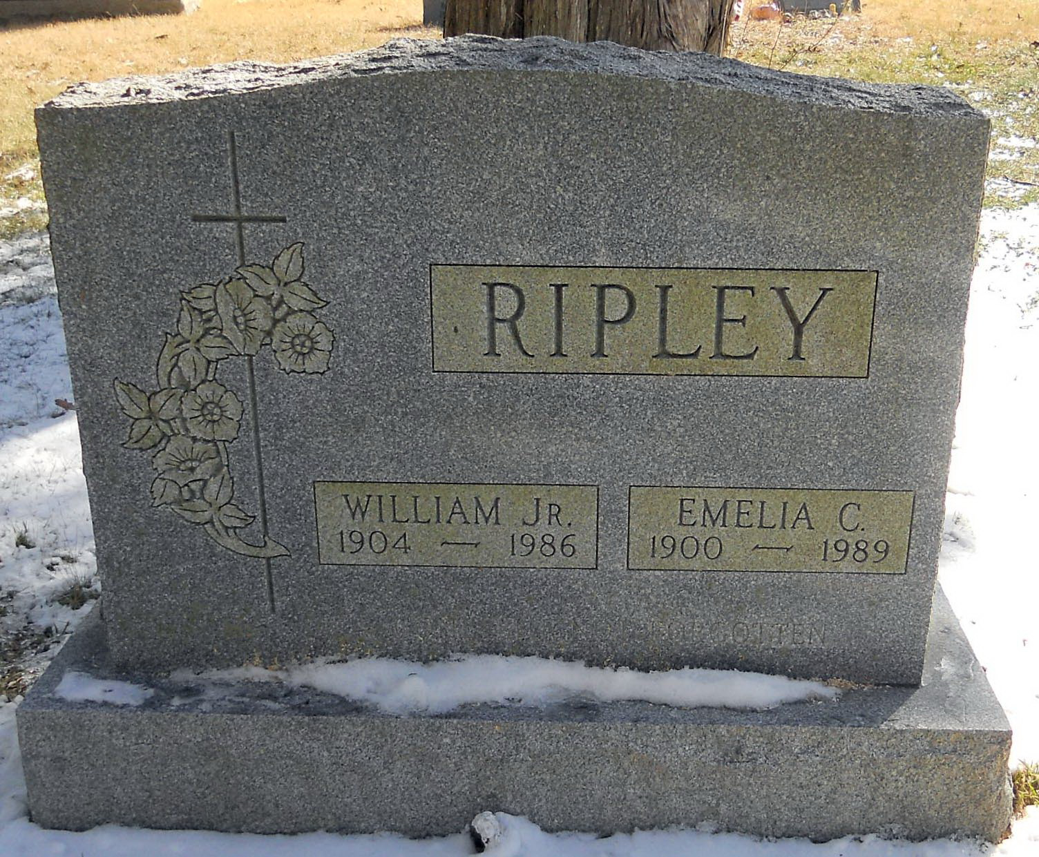 William Moses Ripley